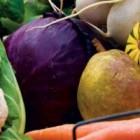 Gradina cu legume organice