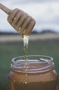 gustare miere