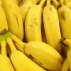 Care sunt cele 5 alimente interzise in diete, dar bune pentru sanatatea ta?