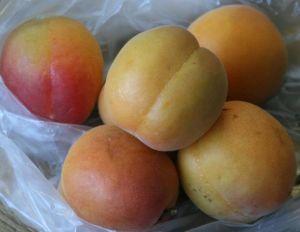 fructe de vara caise