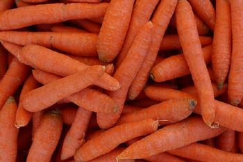 legume morcovi