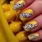 Manichiura zebra