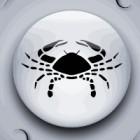 Zodia lunii: Horoscop Rac
