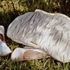 Miu Miu – colectia toamna 2011 (pantofi si genti)
