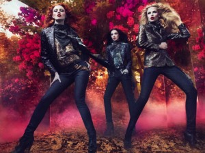 colectia de moda Cavalli toamna-iarna 2011-2012