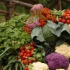 6 recomandari nutritionale in cazul endometriozei