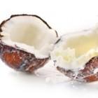 Nuca tropicala si laptele de cocos
