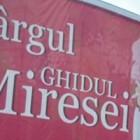 Targul Ghidul Miresei – februarie 2013