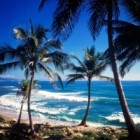 Top 10: de ce iubim Republica Dominicana!