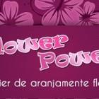 Flower power – Atelier de aranjamente florale