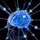 Totul porneste de la… creier