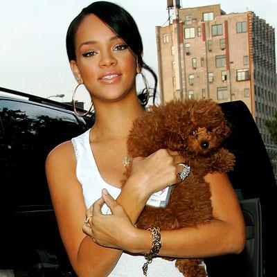 rihanna  jpg Rihanna