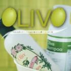 Noul catalog OLIVO