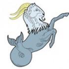 Horoscop erotic – Capricorn