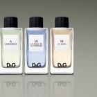 Parfum D&G Anthology Unisex