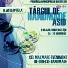 Targul de Handmade ASID