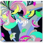 Viziunea si mostenirea lui Pucci