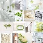 Alb si verde lime – culorile nuntii tale