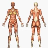 Cat de bine iti cunosti corpul?